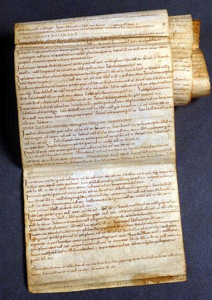 Cronicon Novalicense redatto da un monaco di Breme nell'XI sec.