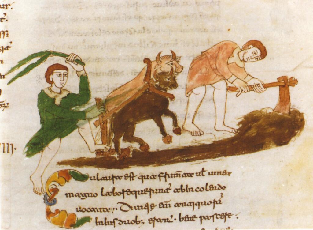 L'aratura dei campi in una miniatura dell'XI secolo