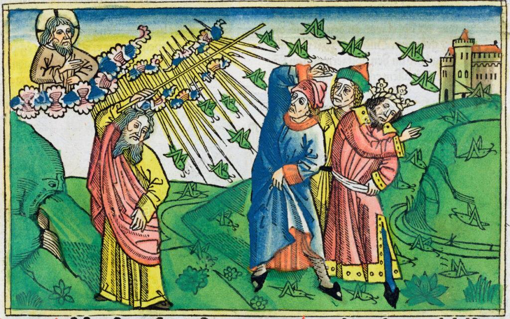 Invasione di cavallette. Bibbia di Duisburg - Anonimo del XV sec.